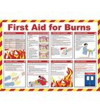 L419 First Aid For Burns Poster